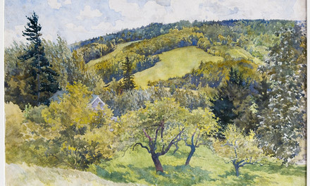 Apple Orchard, Wooded Hillside - Durham Hills or Nova Scotia